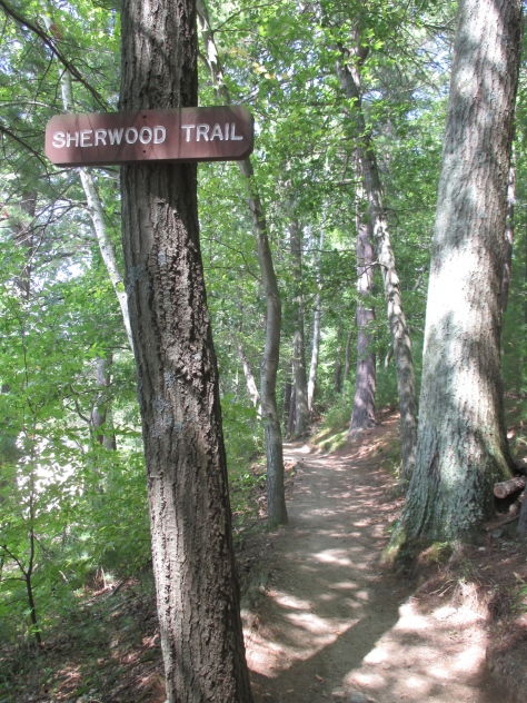 I couldn't resist a sign for Sherwood Trail in the forest surrounding the pond. Walden Pond, Concord MA.