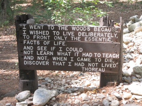 A quote from Thoreau at the cabin site. Walden Pond, Concord MA.